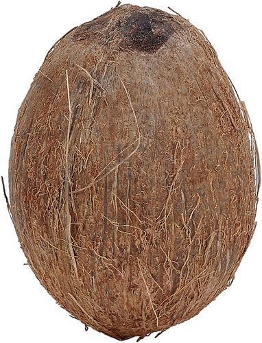 huile de coco pour cheveux secs