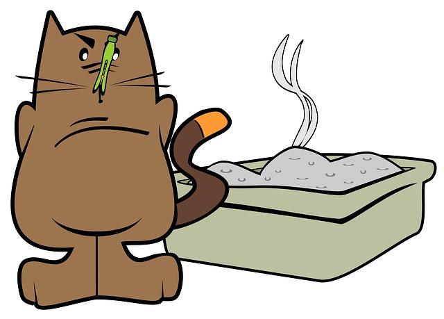Comment repousser les chats naturellement - Enlever odeur pipi chat ...