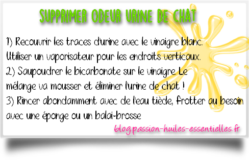 comment repousser les chats naturellement. Black Bedroom Furniture Sets. Home Design Ideas