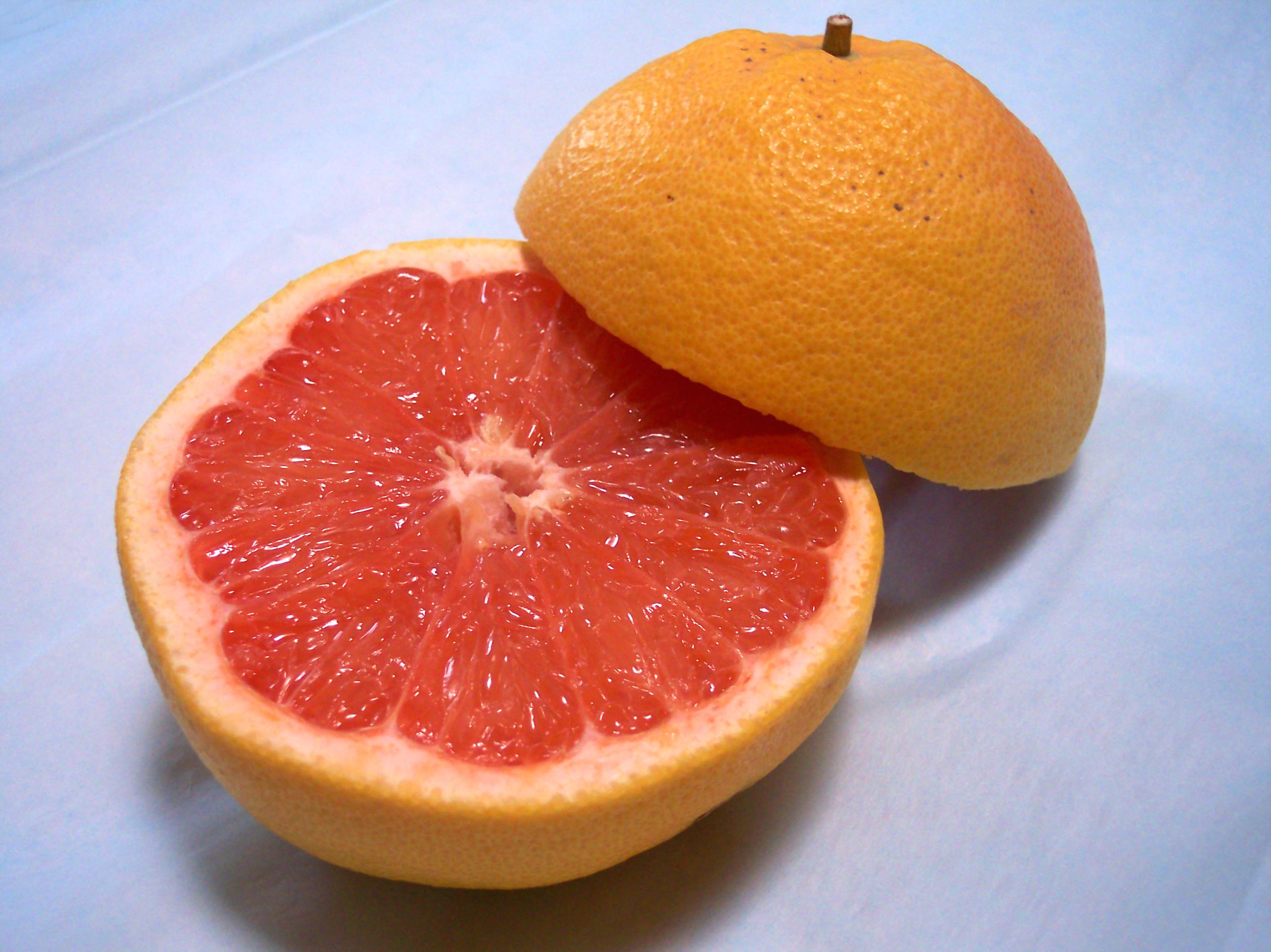 Le microorganisme végétal le traitement avec les préparations de pharmacie