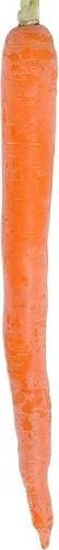 Faire macérât huileux de carottes