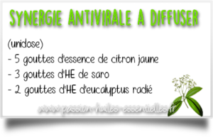 synergie d'huiles essentielles antivirales
