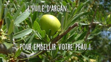 L'huile d'argan et ses vertus pour la peau