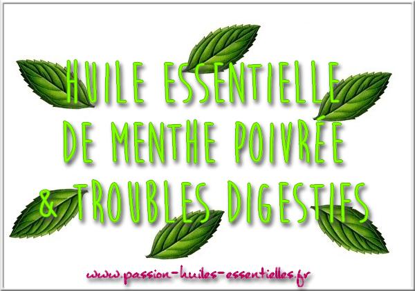 he_troubles_digestifs