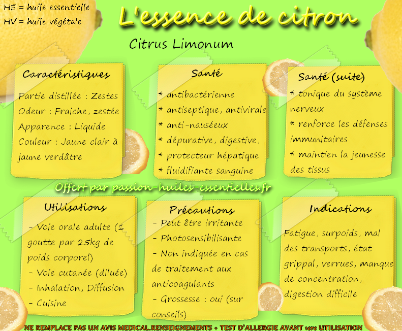 infographie essence citron