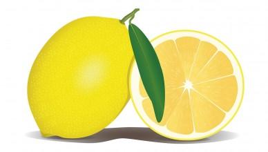 essence citron vertus utilisations