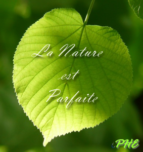 La Nature est Parfaite
