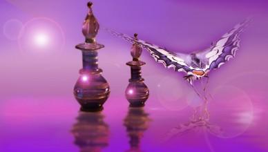 Harmoniser vos Chakras avec les parfums aux huiles essentielles