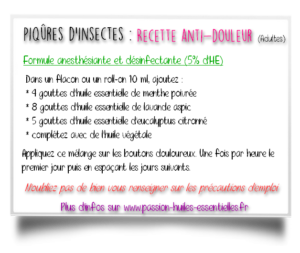 recette naturelle pour traiter bouton de moustique