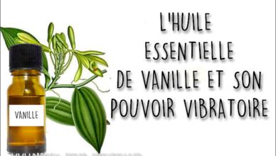 la vanille et son pouvoir énergétique